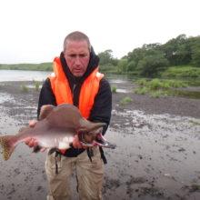 Камчатка: рай для рыболова. 1 июня на Камчатке началась «красная» путина.