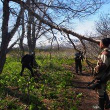 В Южно-Камчатском заказнике волонтёры готовят тропы к полевому сезону