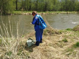 На Камчатке активисты очистили от мусора берег нерестовой реки Авачи