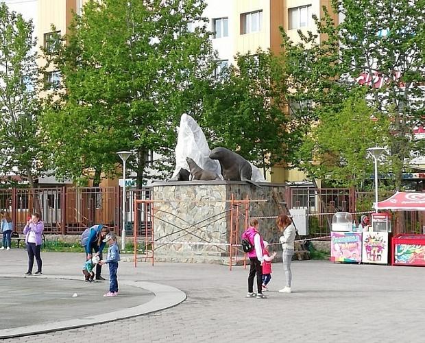 В Петропавловске состоится открытие нового арт-объекта «Семья сивучей»