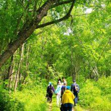 Субботники в рамках Всероссийского конкурса «Зеленый маршрут» прошли на Камчатке в минувшие выходные