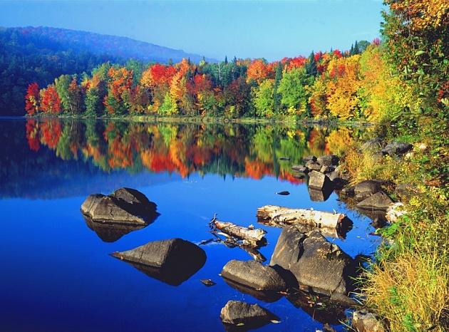 Внесены изменения в Положение о природном парке регионального значения «Быстринский»