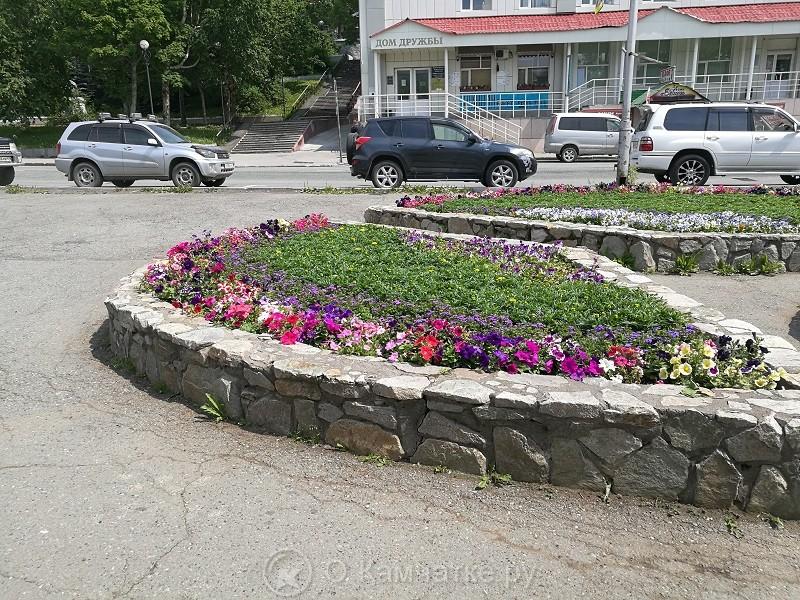 В следующем году в Петропавловске-Камчатском планируется провести масштабную работу по озеленению