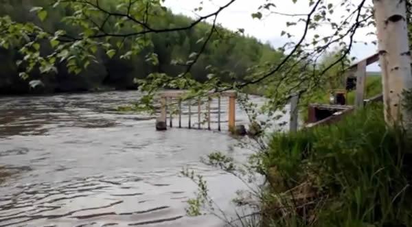 Половодье в реках Ипуин и Левая Щапина (видео)