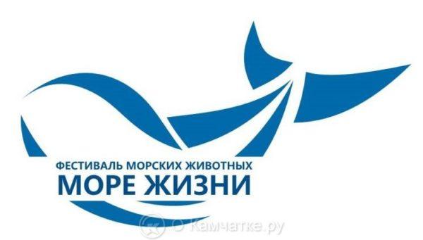 Отказаться от использования пластика призывают организаторы фестиваля «Море жизни» в Петропавловске-Камчатском