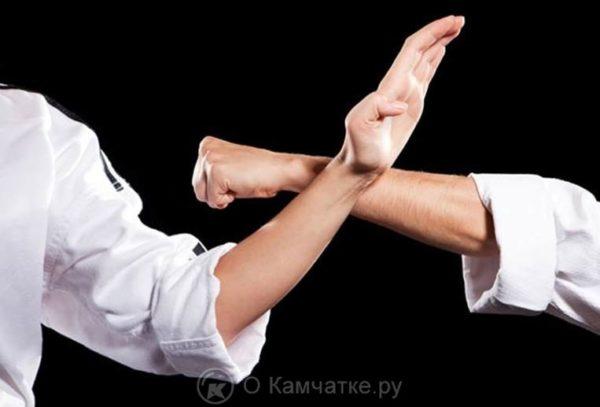 Соревнования по рукопашному бою памяти Евгения Ефремова пройдут в столице Камчатского края