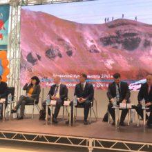 Перспективы развития круизных программ на Дальнем Востоке обсудили в рамках Недели туризма в ДФО на Камчатке