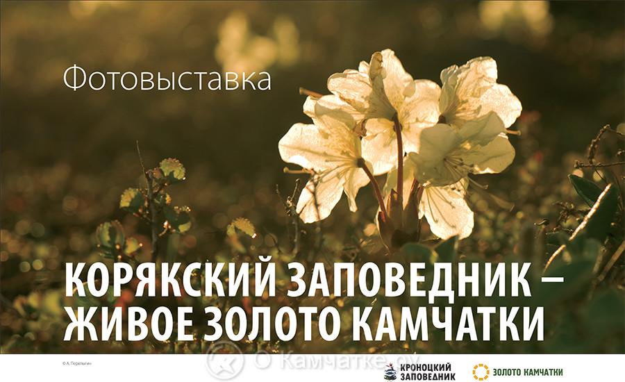Сегодня, в день создания Корякского заповедника, в Центральной библиотеке Олюторского района Камчатского края открылась фотовыставка