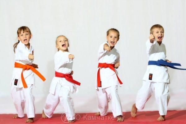 В преддверии Нового года юные единоборцы Петропавловска-Камчатского примут участие в соревнованиях