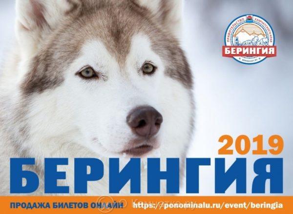 Билеты на открытие традиционной камчатской гонки на собачьих упряжках «Берингия-2019» можно приобрести в точках продаж группы «МТС» и салонах «Алло»